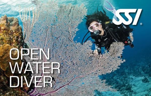 OpenWaterDiver.jpg