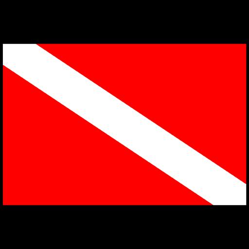 diverflag_favicon.png